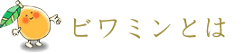 biwa_about